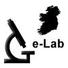 ge_lab1